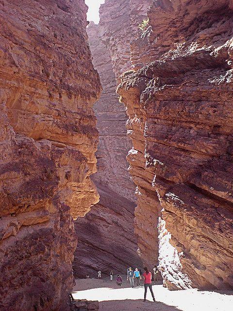 Quebrada de las Conchas, Salta.