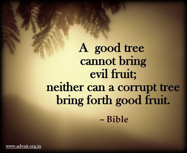 A good tree cannot bring forth evil fruit, neither can a corrupt tree Bring forth good fruit. ~Bible