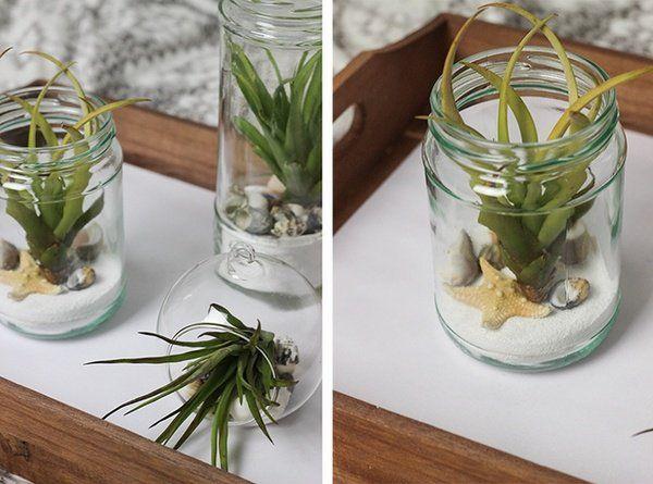 air plant containers ideas jam jars terrarium ideas DIY air plant terrarium