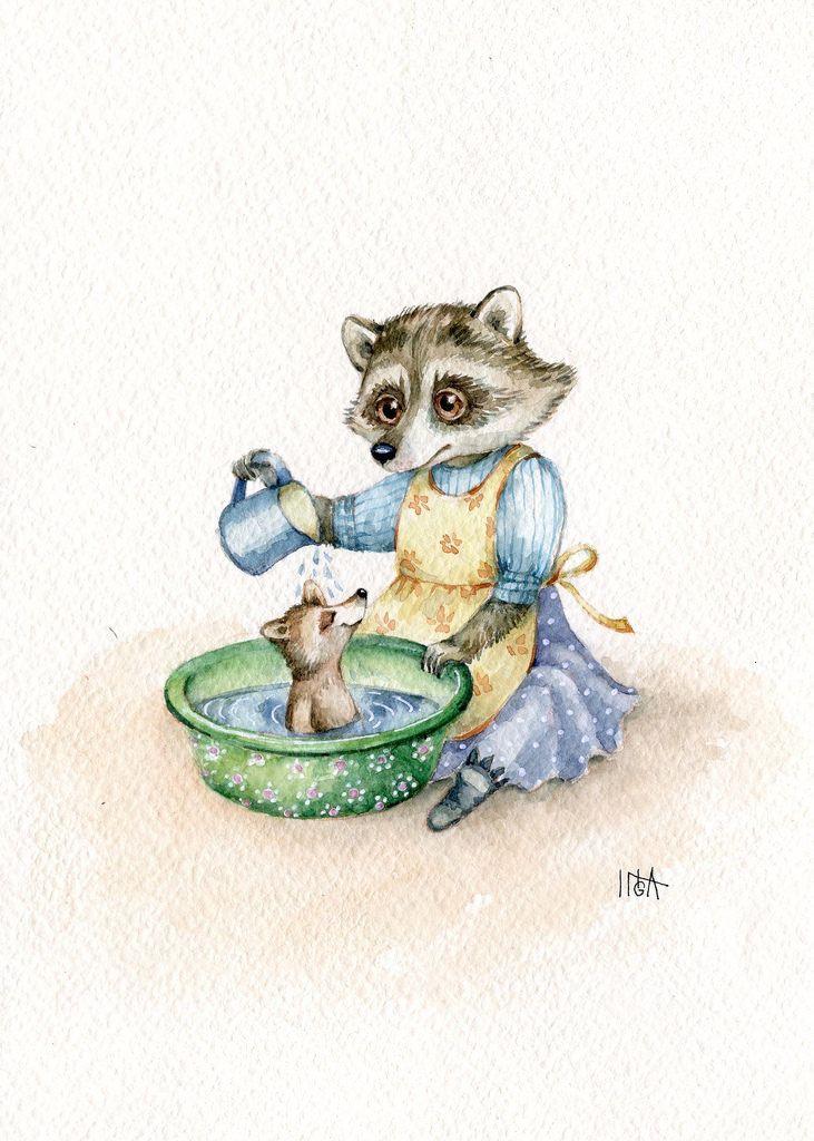 Енот купает in 2020 Animal art, Vintage cat, Cute characters