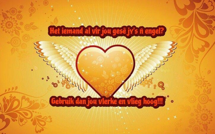 Het iemand al vir jou gesê jy's ñ engel?