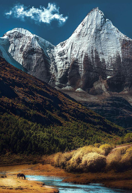 Landschaft / Natur