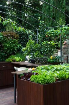 Harpur Garden Images Ltd :: mh09ch253 Silver Flora modern minimal contemporary outdoor outside kitchen preparation area raised beds border vegetables crops edible food culinary cook eat aluminium arch climbing bean salad crops lettuces Design Patricia Fox The Freshly Prepped by Aralia Courtyard Garden RHS Chelsea Flower Show 2009 Marcus Harpur