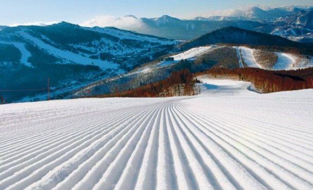 shiga-kogen-skiing
