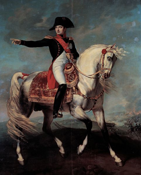 Napoleon on the field of Wagram / Rooms I and II - The First Empire / Route through the rooms - Museo Napoleonico