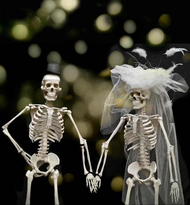 13 Scary Marriage Statistics: A couple of skeletons aren't nearly as scary as marriage itself. © Photo by Sigi Kolbe/Creative/Getty Images