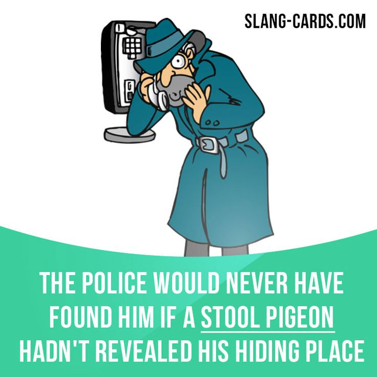 """""""Stool pigeon"""" means a police informer. Example: The police would never have found him if a stool pigeon hadn't revealed his hiding place. #slang #saying #sayings #phrase #phrases #expression #expressions #english #englishlanguage #learnenglish #studyenglish #language #vocabulary #dictionary #grammar #efl #esl #tesl #tefl #toefl #ielts #toeic #englishlearning #stoolpigeon #police #informer"""