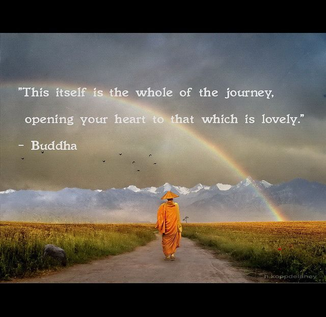 Quotes By Buddha: 25+ Best Ideas About The Journey On Pinterest
