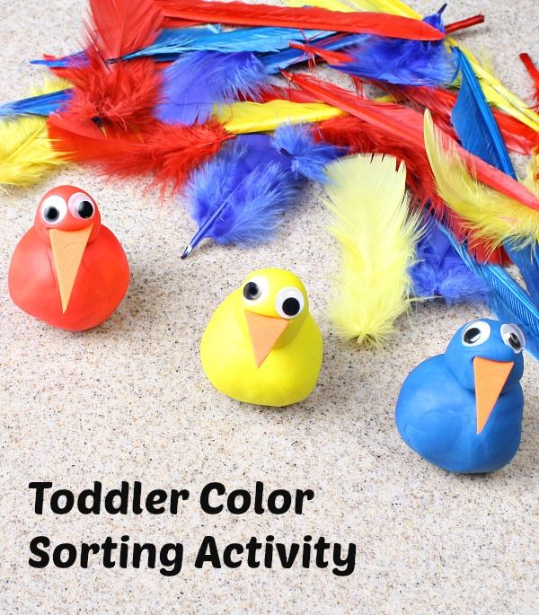 Practice fine motor skills and color recognition with this feather sorting activity for Thanksgiving or any bird theme