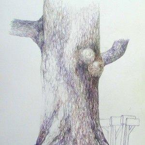 Oak Tree, Graphitint