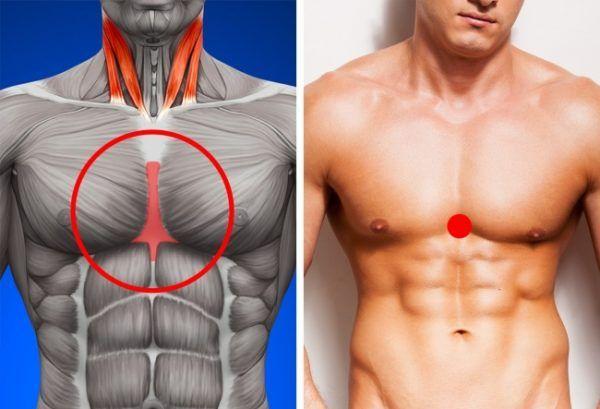 pierderea în greutate stimulează metabolismul)