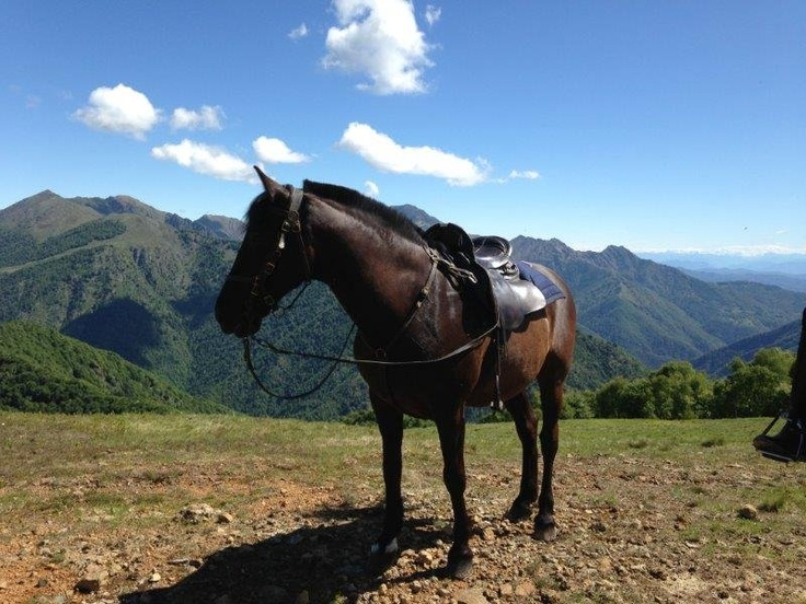 Horse riding in the mountain. Oasi Zegna - Equitazione
