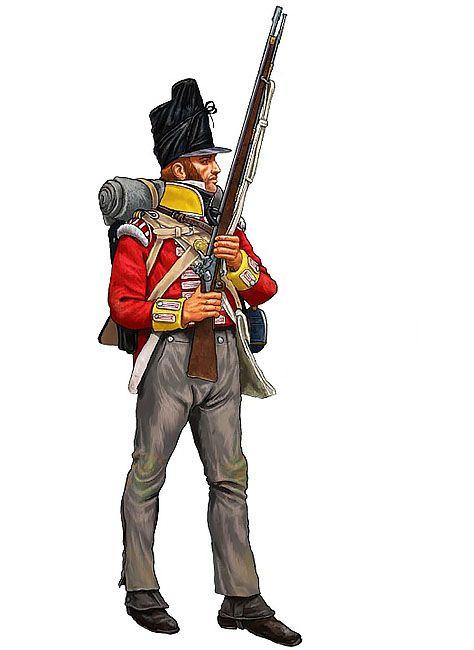 NAP- Britain: Granatiere del 1º battaglione del 27º reggimento di fanteria 'Enniskillen', Waterloo 1815, by Giorgio Albertini.