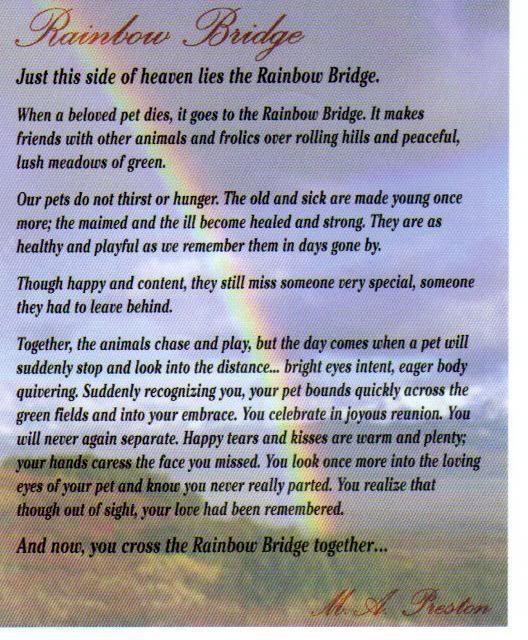 graphic regarding Rainbow Bridge Poem Printable Version identify The Rainbow Bridge Poem Printable Edition