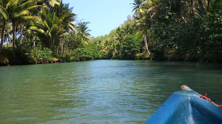Sungai Maron Wisata Susur Sungai di Jawa Timur - Jawa Timur