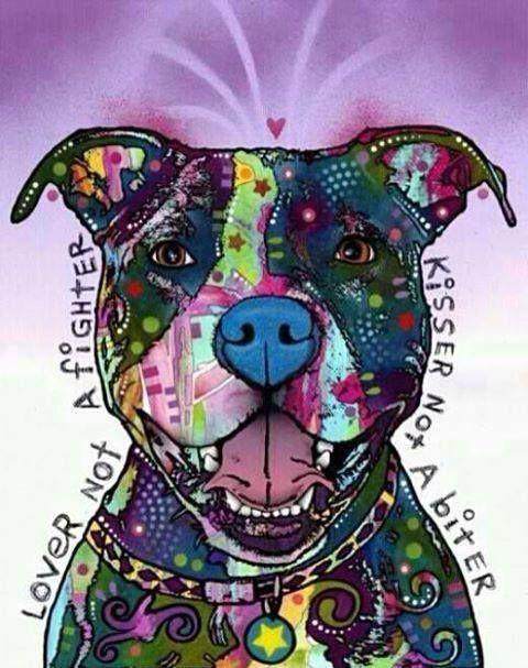 I love this #StaffordshireBullTerrier