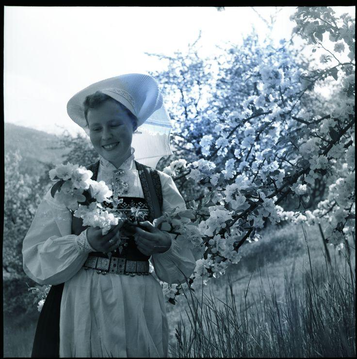 https://flic.kr/p/ussiFF | Bondebryllup i Hardanger | Tradisjonelt bryllup i Ulvik i Hardanger i mai 1954.
