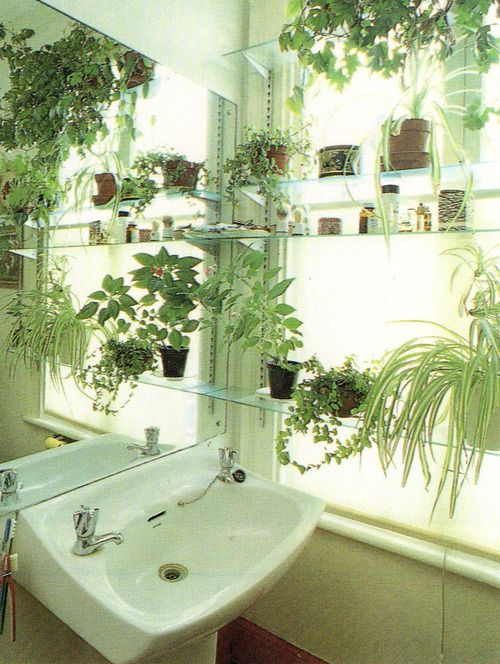 pitifulgirl:  image from 'home design and decorating' by jenny plucknett, 1987 Plants which love the steamy atmosphere of a bathroom will add instant life and colour to a cold room. Use them to hide an unattractive view by placing them on glass shelves across the window. Here, a large mirror set at right angles to the window extracts double value from daylight and plant life to great effect.   *scrabbles at screen, drools*