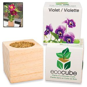 "Ecocube Violet - Grow beautiful flowers from this eco-friendly wood planter! Already filled with seed and fertilizer, so you just add water and sunshine. Plus, cube can be buried outdoors, giving your plant a permanent home. Starts growing in 6-8 days; starts blooming in 7-8 weeks. 3""Cube. (Product Number SM5474) $9.98 CAD"