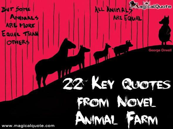 22 Key Quotes from Novel Animal Farm - MagicalQuote