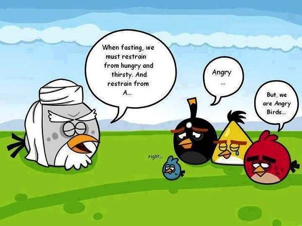 Fasting Angry Birds Ramadan 2013 Pics, Funny Pictures