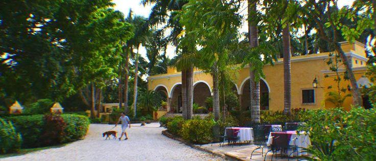 Yucatan Pet-Friendly Hotels: Hacienda Chichen in Chichen Itza offers dog-owners the best vacation destination in Mexico