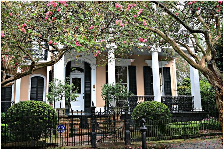 43 Best Nola Dream Home Dream Is The Essential Word Images On Pinterest