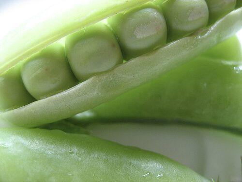 Come riconoscere e quali alimenti mangiare per prevenire il cancro del colon-retto