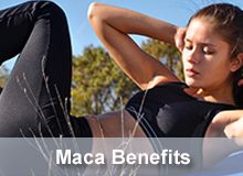 Benefits Of Maca | Maca Root Dangers | What Is Maca Powder | The Maca Team