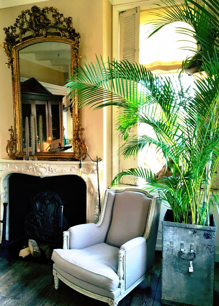Fireplace, mantle piece, palm tree, antique mirror, gold, old wooden floorboards, vintage, cosy, living room