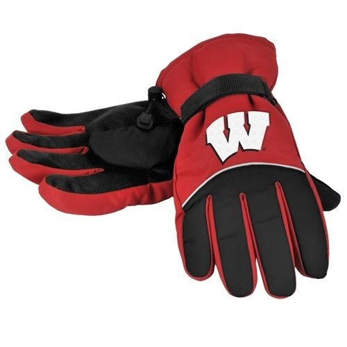 Wisconsin Badgers High End Insulated Gloves