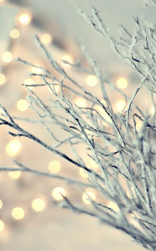 Immagine di snow, christmas, and winter