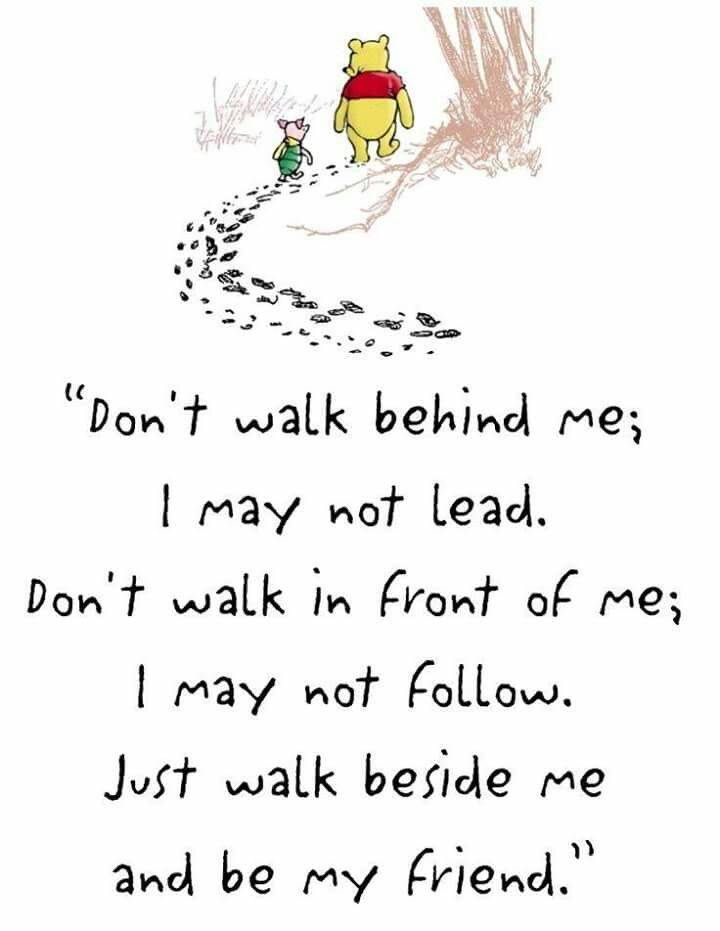 """Don't walk behind me; I may not lead. Don't walk in front of me; I may not follow. Just walk beside me and be my friend."""