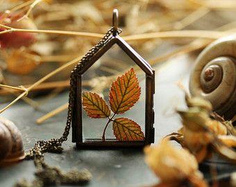 Musgo blanco terrario collar planta vida por RubyRobinBoutique