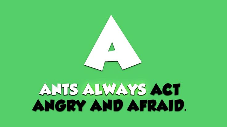 Alphabet Animals Song Video