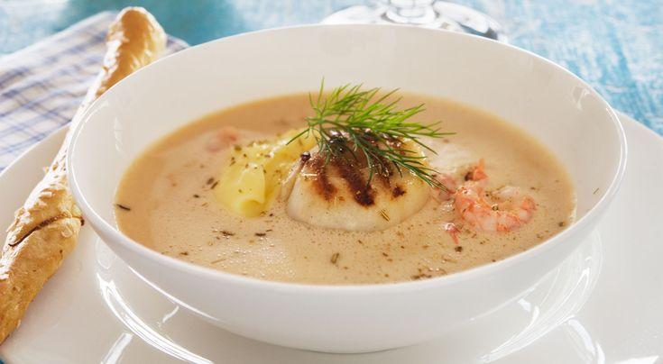 Recept på skaldjurssoppa med pilgrimsmussla och fänkålsaioli. Soppan och aiolin går utmärkt att göra dagen före servering. Servera pilgrimsmusslorna nystekta till.