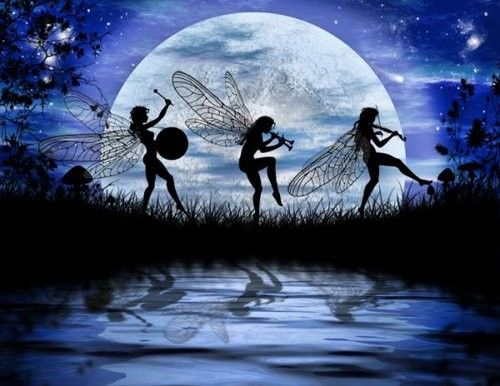 Fairies dancing in the moonlight!