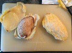 Noyau mangue