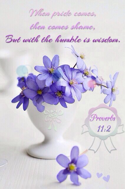 """Proverbs 11:2 - """"When pride comes, then comes shame, but with the humble is wisdom. #Bible #quotes"""