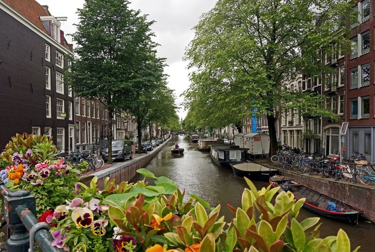 Man Made Amsterdam  Wallpaper