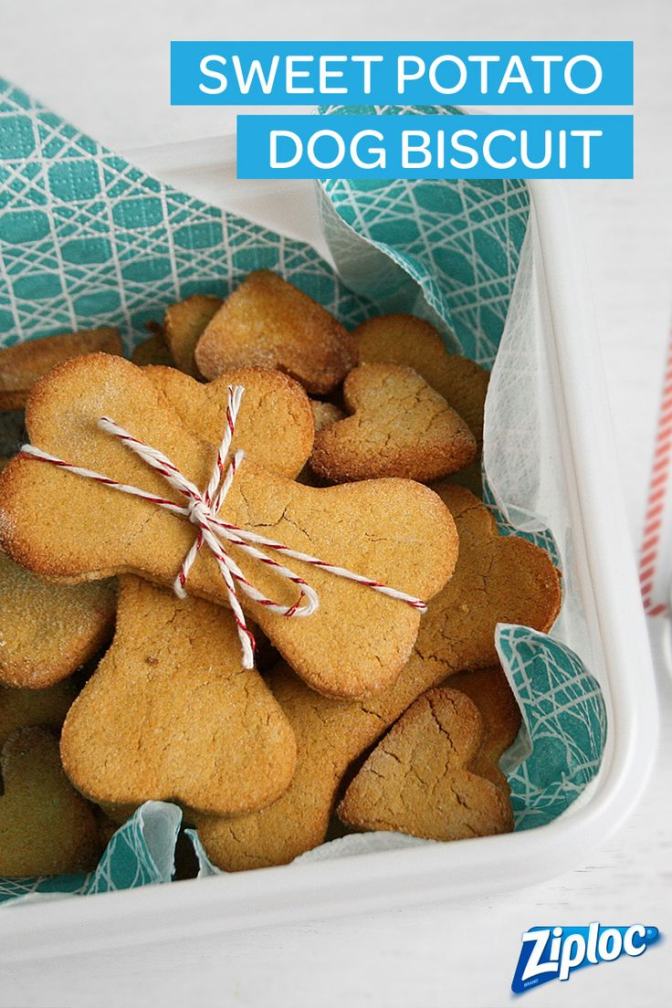 It's always fun to surprise loved ones—furry friends included! Try this sweet potato dog biscuit recipe- gift delicious biscuits in Ziploc® containers. They're easy to dress up!