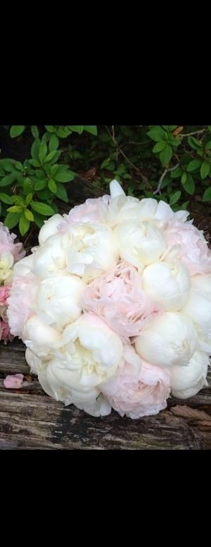 Peonies bouquet from my farm house garden by p.paula