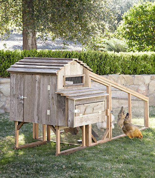 17 Best Ideas About Backyard Chicken Coops On Pinterest