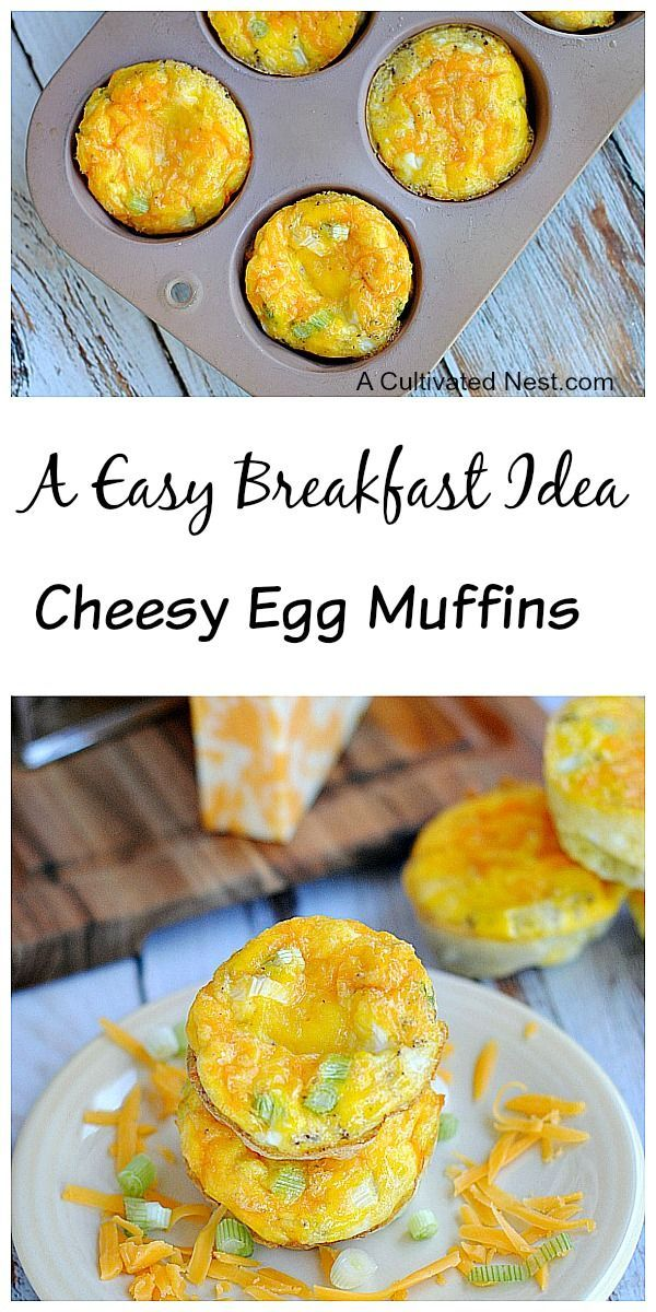 Egg muffins are quick & easy to make! They're versatile since you can...