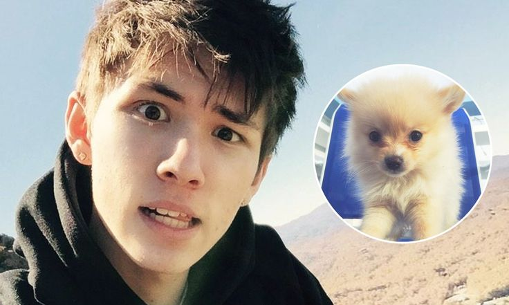 Carter Reynolds Criticized for 'Racist' Dog-Eating Vine by YouTubers - http://superfame.com/post/carter-reynolds-criticized-for-racist-dog-eating-vine/