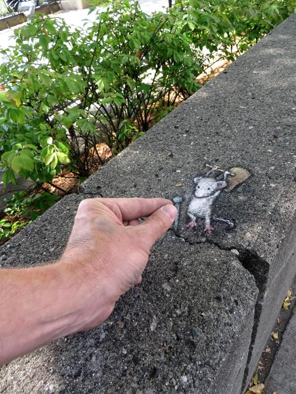 Artists Lights Up City Streets With Amazing Chalk Art Featuring Cute Animals and…
