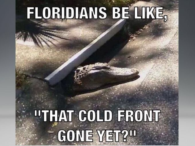 Floridians Be Like That Cold Front Gone Yet Florida
