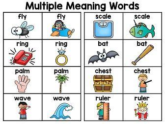 Multiple Meaning Words | Multiple Meaning Words, Homographs and Charts
