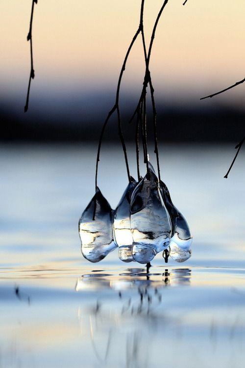 Ice drops by Kolbjørn Pedersen