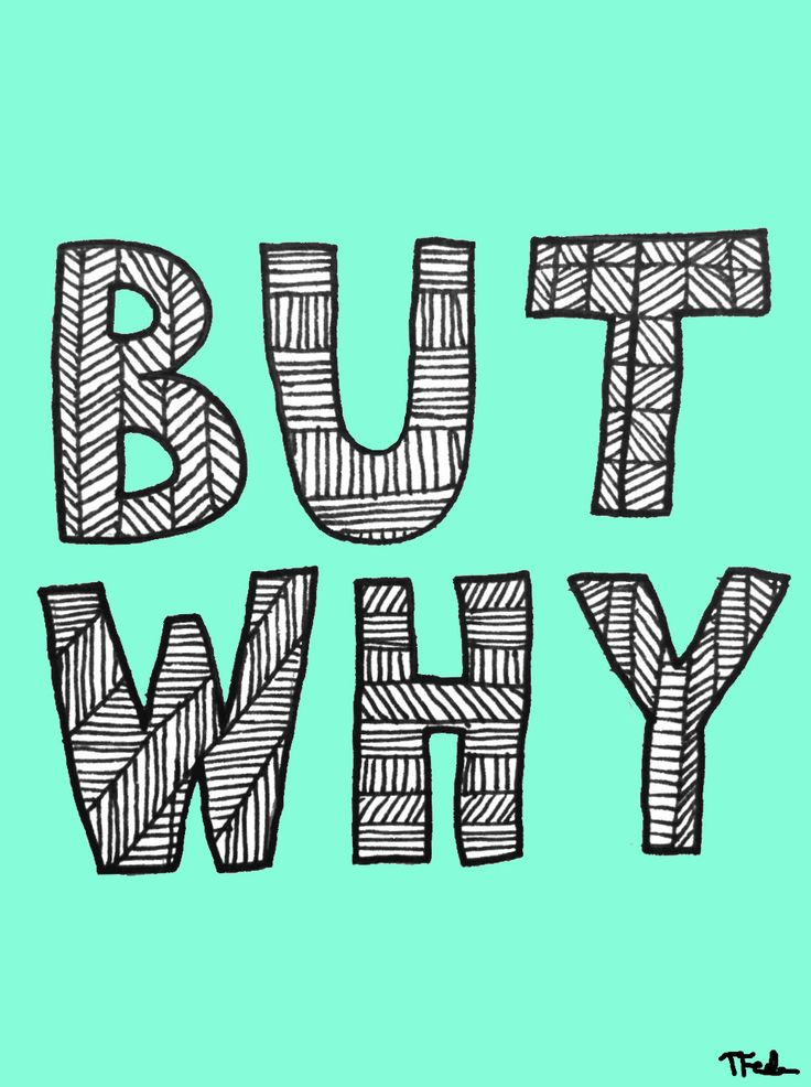 BUT WHY Print - Hand-Illustrated. $20.00